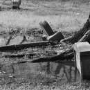 Erosion Remediation